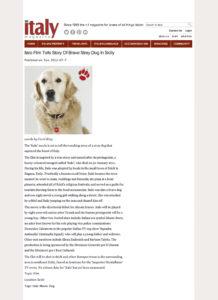 Alessia Scarso regista italiana donna film Italo scicli rassegna stampa marco bocci italy magazine stray dog