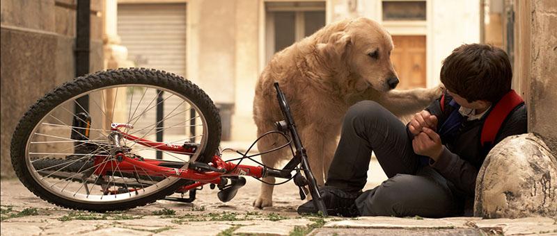 Alessia Scarso regista italiana donna film Italo cane