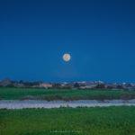 Alessia Scarso astrofotografa Astrofotografia di Superluna su paesaggio ibleo con muri a secco