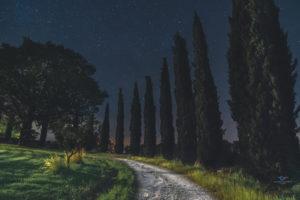 Astrofotografa Alessia Scarso astrofotografia strada sterrata cipressi umbria cielo stellato